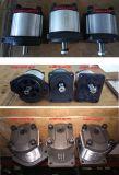 Motor de engrenagem de bomba hidráulica para raspador de motor com rolamento de popa