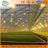 Новая конструкция полного спектра светодиодный индикатор для роста сельского хозяйства проект