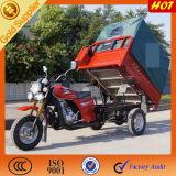 150cc de 3 ruedas Trike de coches