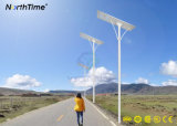 Réverbères solaires d'éclairage extérieur de lampe de cour de la basse tension 100W