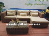 屋外の庭のテラスの総合的な藤の家具
