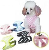 Le chien vêtx le harnais de chien de vêtements d'animal familier de harnais de voiture