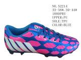 Le bleu colore deux chaussures du football d'unité centrale de taille