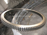 Anel de aço grande, anel grande da engrenagem