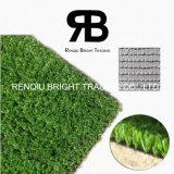 relvado artificial sintético da grama de 10mm para o Greening do monte da areia/Greening do beira-mar/ajardinar Greening da estrada