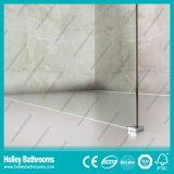 Walk-in Door Simple Shower Room Elclosure Door Screen (SE716C)