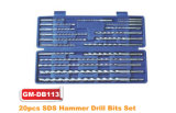 20pcs Marteau perforateur SDS bits définis (GM-DB113)
