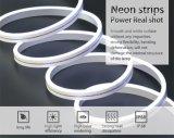 Il Ce RoHS ha approvato l'indicatore luminoso al neon al neon della flessione della striscia 120LEDs/M 24V LED di alta qualità LED