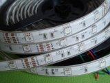 Goedkope 5050 300 RGB LEIDENE van de Kleur LEDs Strook DC12V 24V