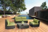 樹脂の柳細工の屋外の庭の余暇の家具の藤のホーム家具Bp872