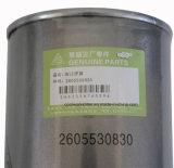 2605530830 pezzi di ricambio di Fusheng del compressore d'aria per il filtro dell'olio