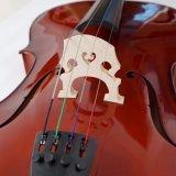 Violoncelle fabriqué à la main d'instruments de musique de violoncelle du meilleur violoncelle