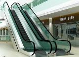 Vidro Tempered da escada rolante com o certificado do ANSI TUV do Ce