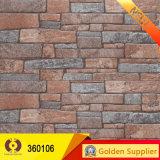 Mattonelle rustiche che costruiscono le mattonelle fuori delle mattonelle della parete (360110)