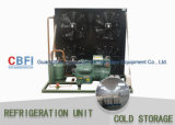 Bitzer Cold Storage Unité de réfrigération