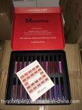 Balais mats liquides Lipgloss 22PCS/Set réglé de Morphe de rouge à lievres de Morphe d'arrivée neuve