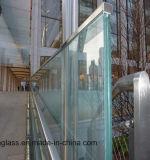 حديد منخفضة يرقّق [سغب] زجاج لأنّ بناية درابزون سقف ستار