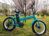 2017 최신유행 접히는 전기 자전거 산은 뚱뚱한 타이어를 가진 하신다