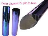 Corea violeta y azul camaleón que cambia de color Ventanilla Film