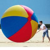 巨大なPVC膨脹可能な空気ビーチボール
