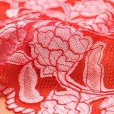 Testo fisso sexy del merletto della biancheria intima di Salwar Kameez, merletto Fbric, merletto del merletto