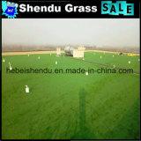 Gramado artificial 20mm da grama com densidade 18900tuft/M2