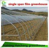 Поли дом полиэтиленовой пленки зеленая для огурца