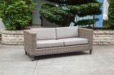 Современный удобный/плетеной диван для садовой мебелью (LN-2002)