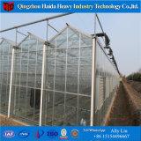 L'agriculture Multi-Span Le verre trempé serre avec la culture hydroponique Stsyem