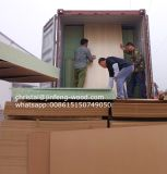 tablero de madera aglomerada impermeable de 1220*2440m m para la puerta