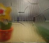 Vidro modelado decorativo usado para o vidro da construção da casa
