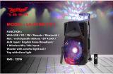 Диктор Feiyang Bluetooth портативный DJ с шариком Crystall