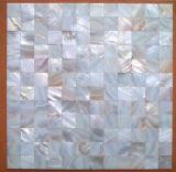 A decoração do mosaico da Shell (YBM2523)