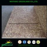 Bois de pin de qualité environnementale pour les meubles du BSF