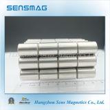 Perfecte Permanente Magneet AlNiCo8 met RoHS voor de Magneet van het Instrument