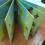 Impression dure de couverture de livre d'enfants