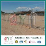 Calientes Chian temporales de la conexión Fence/50X50mm sumergidos galvanizan la línea Chian cerca
