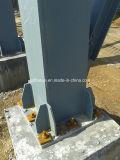 Estructura de acero ligero Taller (QDSW-002)