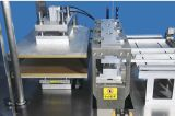 (KD-580) Automatisches orales Flüssigkeit-/Phiole-/Ampullen-Tellersegment, das Maschine herstellt