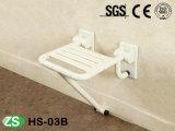Sede piegante fissata al muro dell'acquazzone del bagno della presidenza di acquazzone