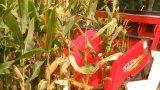 Multifuncional de maíz para la segadora