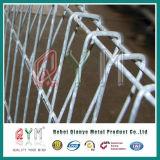 Frontière de sécurité enduite de treillis métallique de Brc Rolltop de frontière de sécurité de maille de PVC Brc