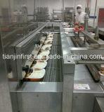 Непосредственно на заводе туннеля питания быстрого морозильную камеру на питание Dumpling креветок