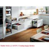 Armário de cozinha Pet moderno Aotin China