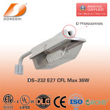 36W Energy Saving Village Ce RoHS approuvé Street Light