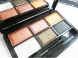 Washami stellte kosmetischer Mattverfassungs-Augenschminke-Paletten-Schimmer der 6 Color+ Pinsel-Set ein