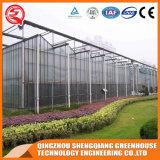 Коммерчески парник листа поликарбоната стальной структуры земледелия для овоща