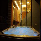 Monalisa à vendre la STATION THERMALE de luxe globale de baquet chaud d'exportation (M-3315)