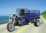 Mtr 고전적인 디자인 (TR-3)를 가진 200cc 5 바퀴 기관자전차 또는 화물 세발자전거