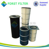 Cartucho de filtro de aire de poliéster Forst